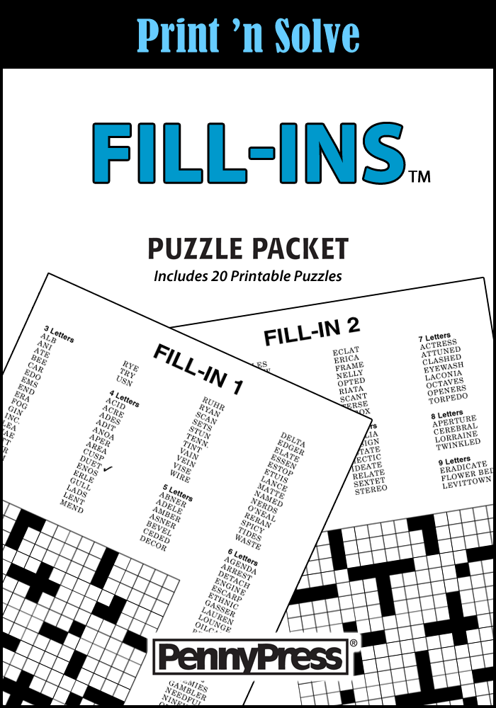 Fill-Ins Puzzle Packet